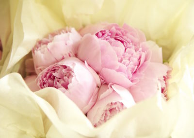 Pale Pink Peony Bridesmaid Bouquet_lr
